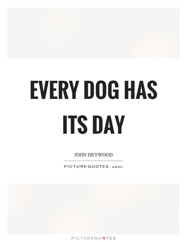 Every Dog Has Its Day Picture Quotes