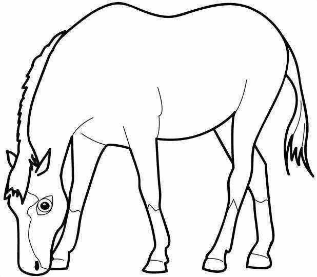 7200 Gambar Mewarnai Binatang Kuda Gratis Terbaru