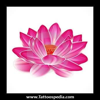 Japanese Water Lily Tattoo Design