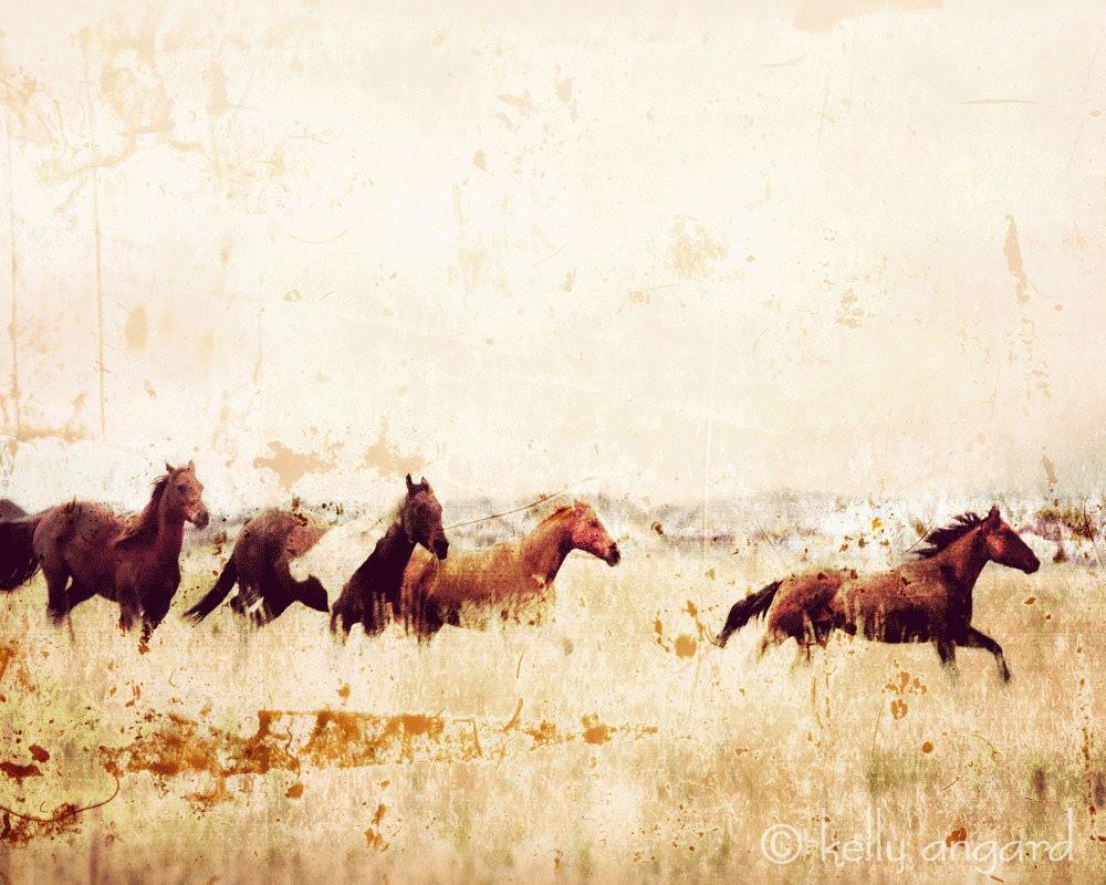 Horse Photograph, horse photography - 8x10 wild horses running photo, Colorado landscape, mountains nature, wall decor - kellya