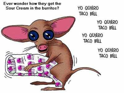 What the Taco Bell Chihuahua and Mojo from TRANSFORMERS both have in common...