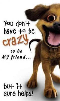 Funny Crazy Friendship Quotes Quotations Sayings 2019