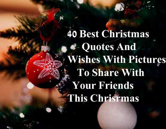 40 Best Christmas Quotes And Wishes With Pictures To Share With
