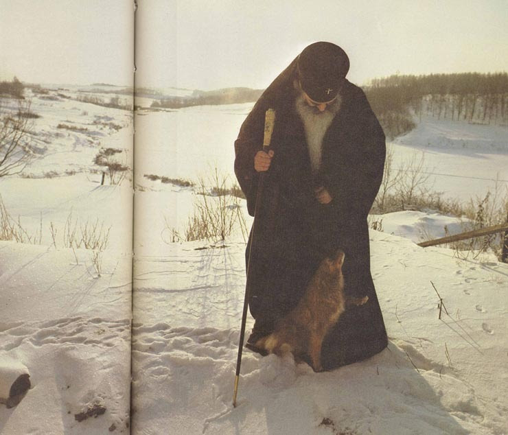 """""""In our weakness, how can we not shudder and try to escape from the distractions of this life, we who are nothing and who are as insensate as brutes? Wretched as I am, would that I had been true to my nature, as animals are; for the dog is better than I."""" - St Peter of Damaskos"""