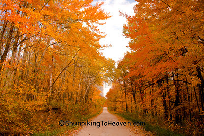 Fall Color, Sauk County, Wisconsin