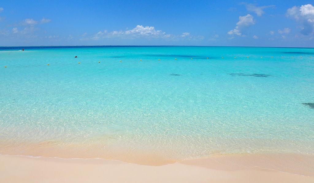 Seis nuevas playas mexicanas tienen el distintivo Blue Flag por altos estándares de calidad