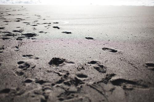 beach15 copy