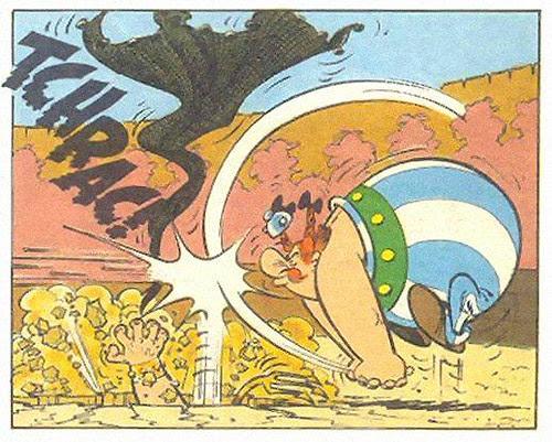 070612_bloguncoveringorg_luta-asterix-1