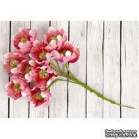 Набор цветов Prima - Fairy Rhymes - Pink - ScrapUA.com