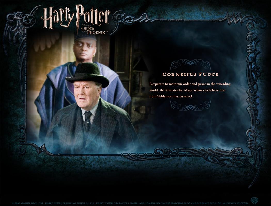 Character Profile - Harry Potter Photo (130077) - Fanpop