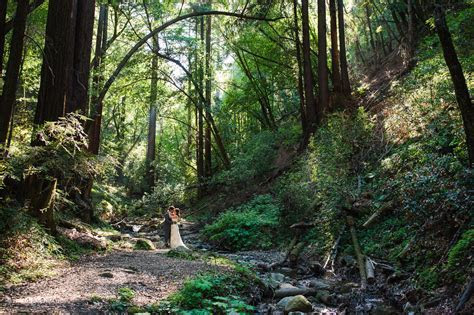 Intimate Cathedral Grove Wedding at Saratoga Springs   SF
