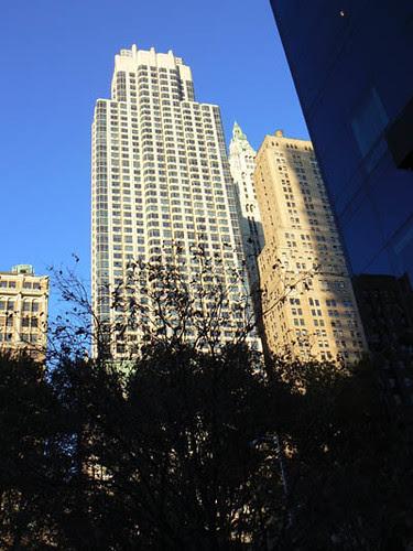 en face du WTC.jpg