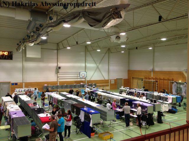 Averøyhallen fylt med utstillere fra Norge og Sverige :)