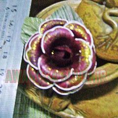 klobot bunga mawar kecil hias brown