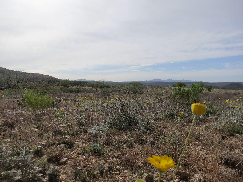 photo Black Canyon Trail 029.jpg