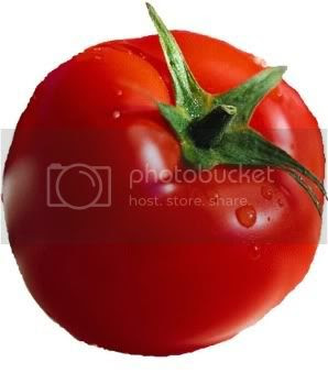 tomato Pictures, Images and Photos