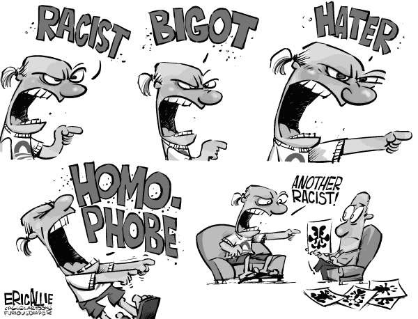 Image result for cartoons about silly racism