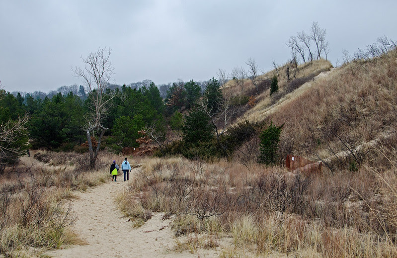 The Dunes Before the Snow