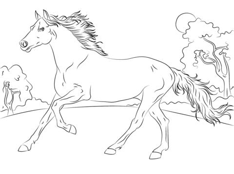 Pferde Malvorlagen Zum Ausdrucken Schreiben