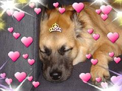 Princess Snick