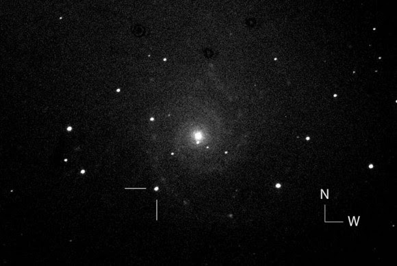 One of the first photos of the possible new supernova in the nearby galaxy M74 taken by the Italian Supernova Search Project. The object is located 93