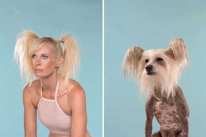 Charlotte & Caspar (Chinese Crested)