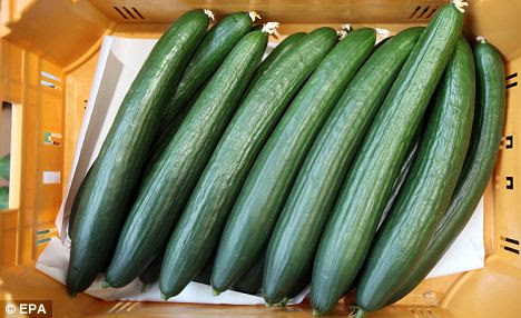 Alert: German experts yesterday identified Spanish cucumbers as the source of a virulent super-bacterium that has killed five people