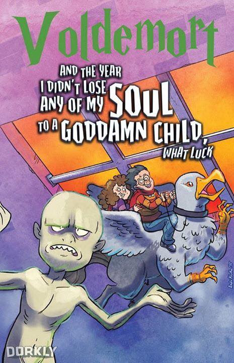 """Tradução livre: """"Voldemort - E o ano que eu não perdi nada da minha alma para uma maldita criança, que sorte"""""""