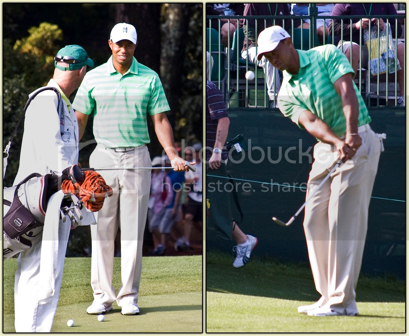 Tiger Woods Diptych