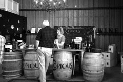 Copious Winery - tasting room
