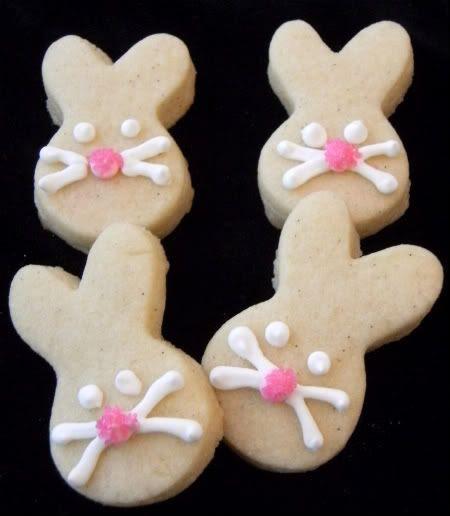 bunnies pink noses