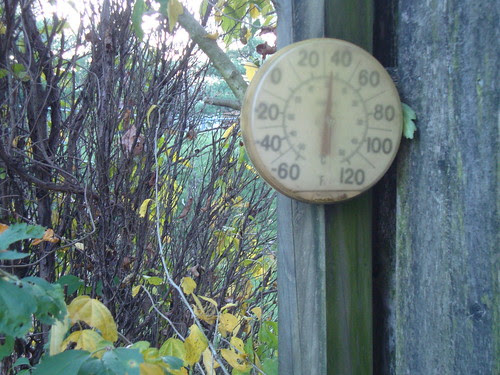 The temp for the photo shoot this morning 10/21/13