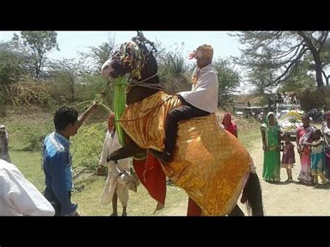 Horse Dancing in Indian Adivasi Wedding Ceremony   Horse