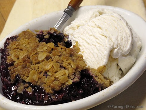 Old-Fashioned Blackberry Crisp 1 - FarmgirlFare.com