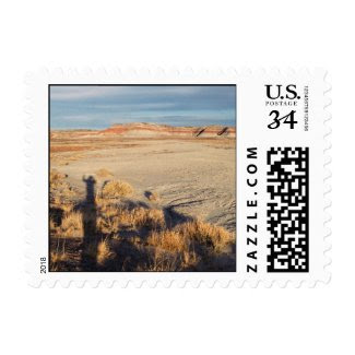 Desert Wave – Small Stamp