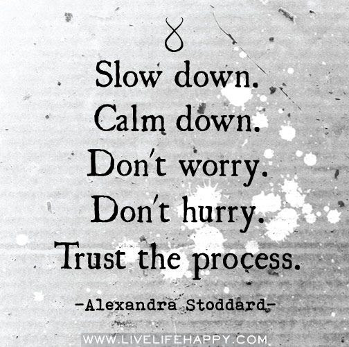 Quotes About Slow 538 Quotes