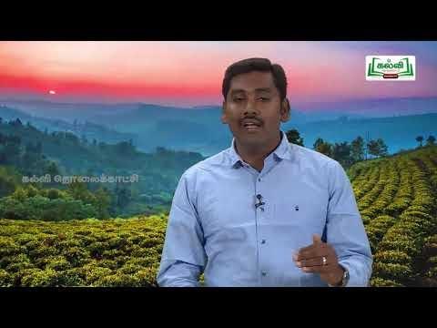 கவிதைப் பேழை Std 9 Tamil இராவண காவியம் Kalvi TV