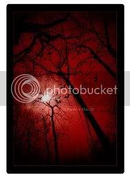 bloodyforest.jpg blood red forest image by xxsasunaruyaoifanxx