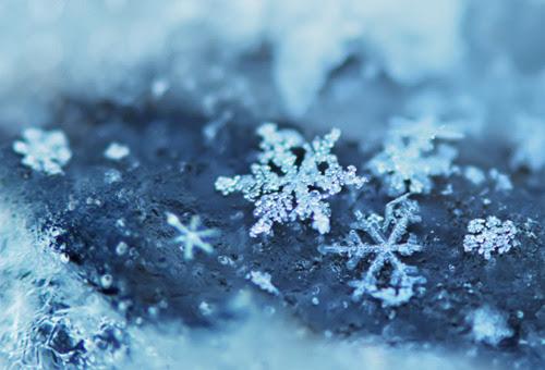 blue, snow, snowflake, winter