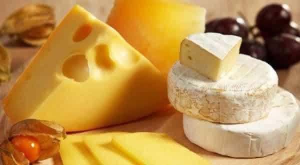 queijo entre os limentos ricos de proteina