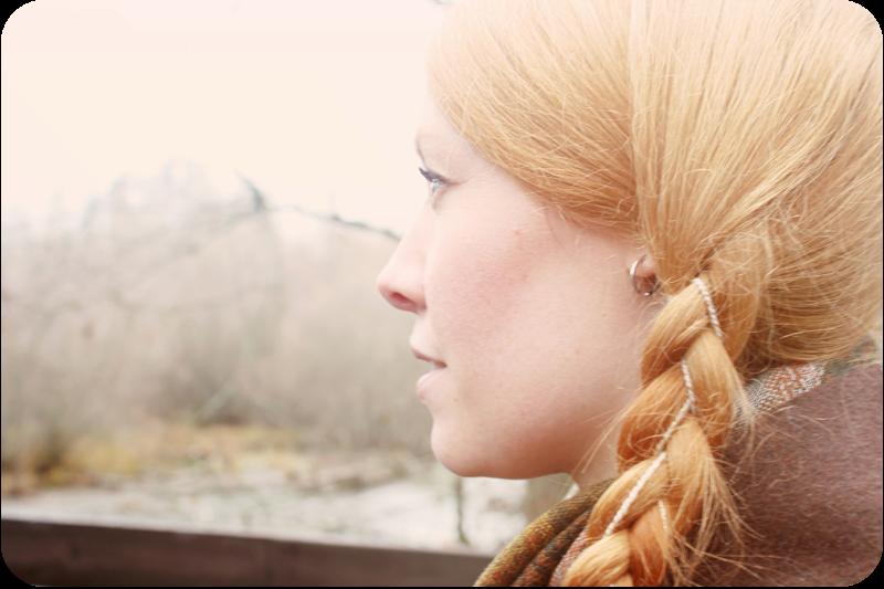 winter braids