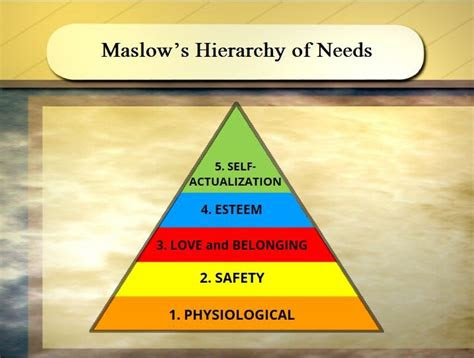 maslows hierarchy   exercise wisc  oer