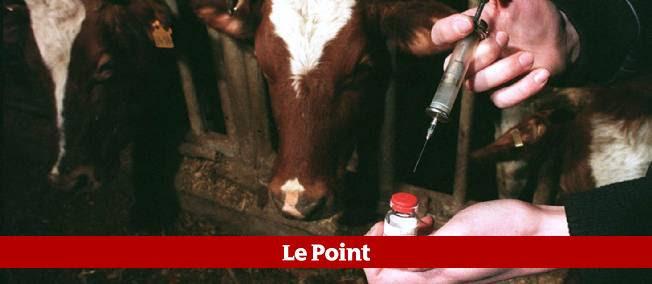L'Union européenne a interdit en 1988, pour des raisons sanitaires, les importations de viande bovine issue d'animaux traités aux hormones de croissance.