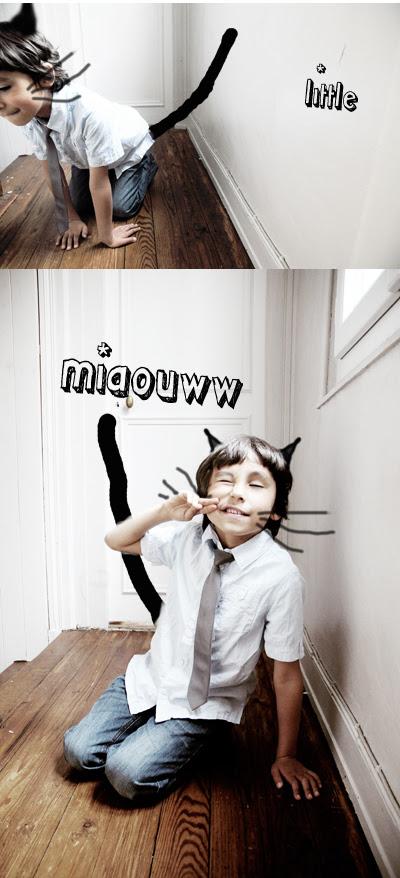 little miaou