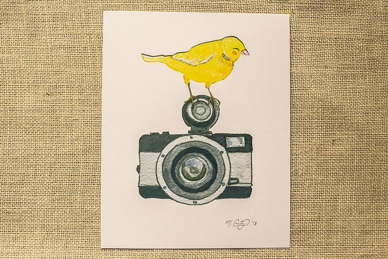 Camera Canary
