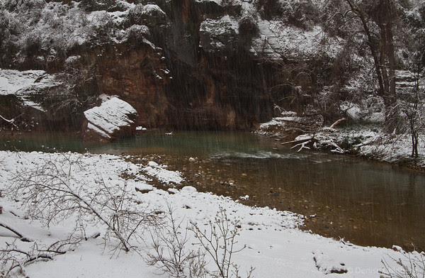 snow falling on the Virgin River, Zion National Park