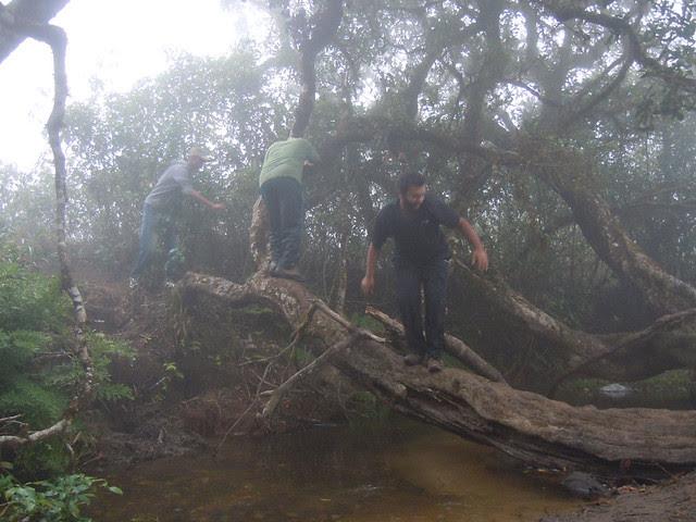 Brahmagiri_Trek_Water_Crossing2