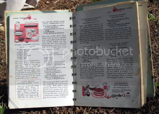 vintage cookbook 550
