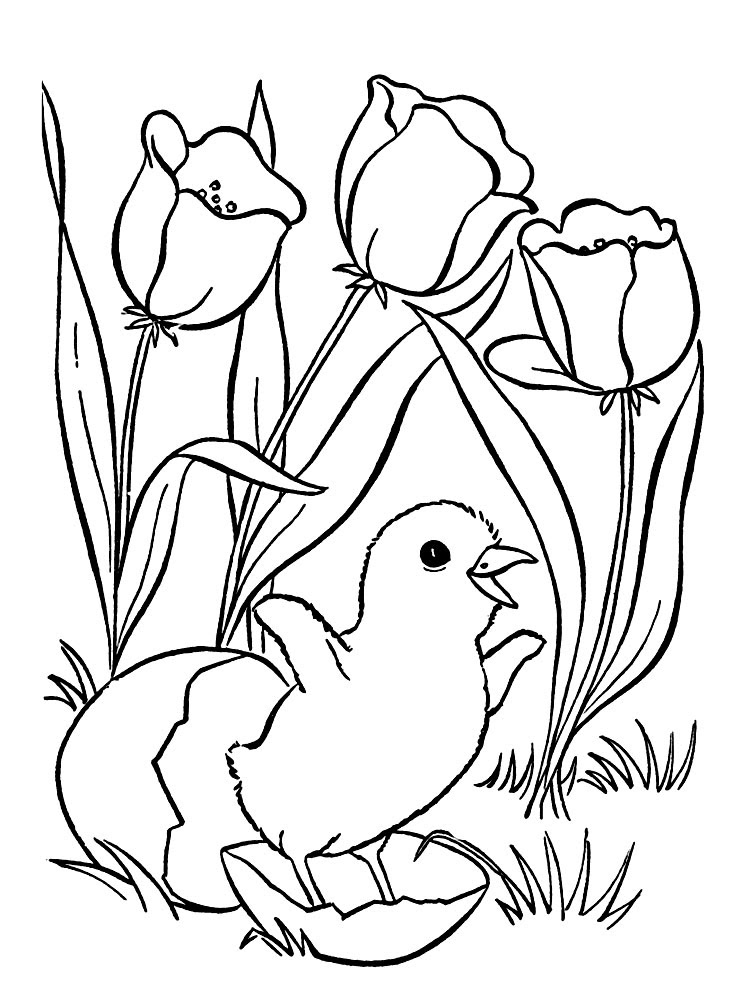 coloring pages for 5-7-year old girls to print for free