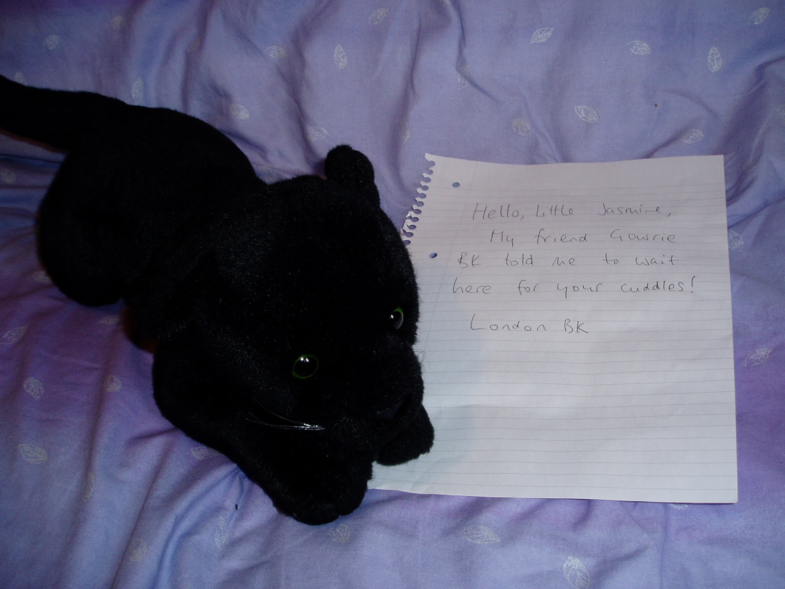 London BK with note for Jasmine: Hello Little Jasmine. My friend Gowrie BK told me to wait here for your cuddles. London BK.